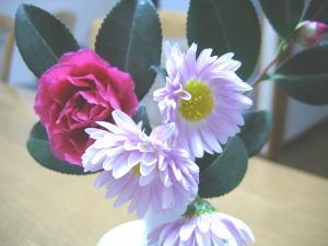 エメラルド婚花